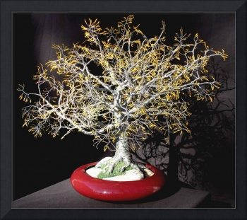 YELLOW OAK - Wire Tree Sculpture