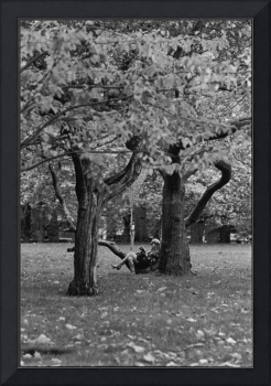 Tourist Resting, Green Park, London