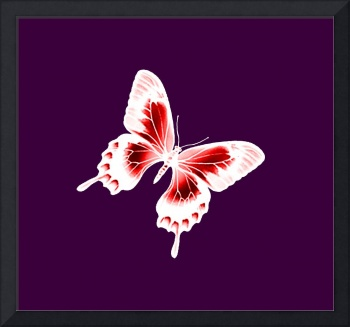 Red & White Butterfly Violet Background
