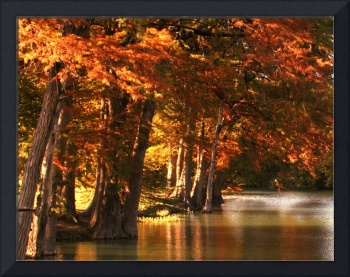 Guadalupe River Fall