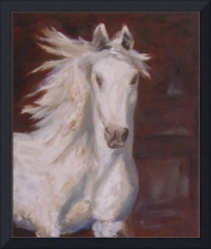 Spanish Andalusian Horse