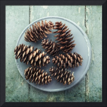 still life with seven pine cones
