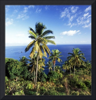 Comoros pictures