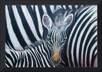 And, Baby Zebra Makes Three