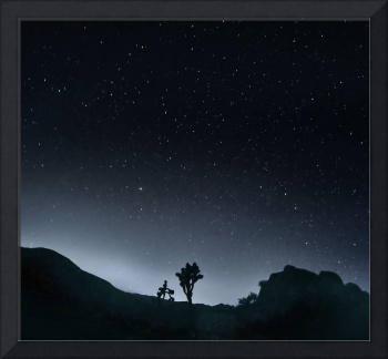 SILHOUETTE AND STARS