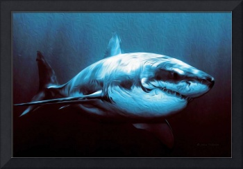 Battle-Scarred Great White Shark