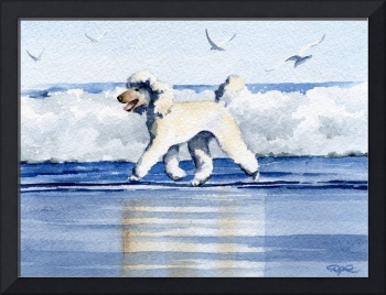 White Poodle at the Beach