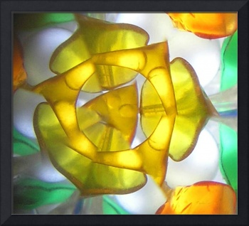 Kaleidoscope Garden ~ Yellow Rose