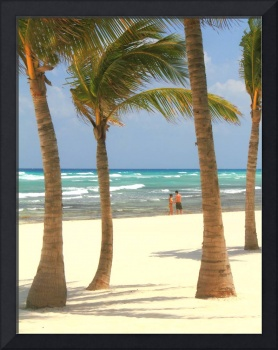 Palm Trees and Beach in Playa del Carmen