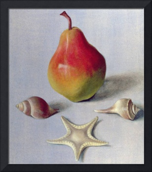 Pear and Shells, 1981 (egg tempera on paper)