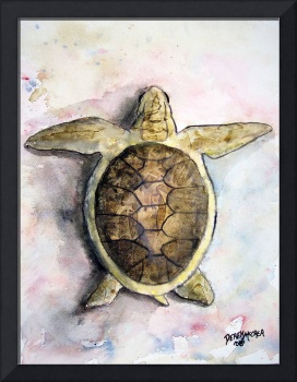 sea turtle painting print