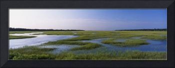 Salt Marsh Atlantic Coast FL