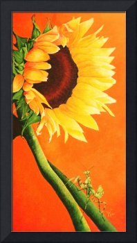 Sunflower and Preying Mantis