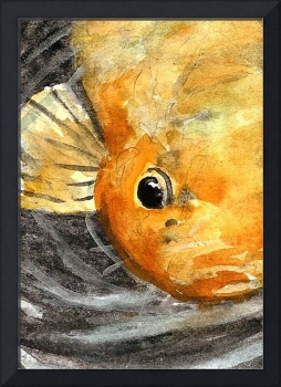 fishy 1 watercolour atc