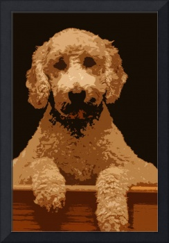 Cartoon Goldendoodle