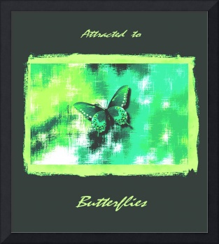 Green Grey Butterfly On Green Yellow Abstract with