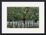 Wood National Cemetary by Mark Cullen