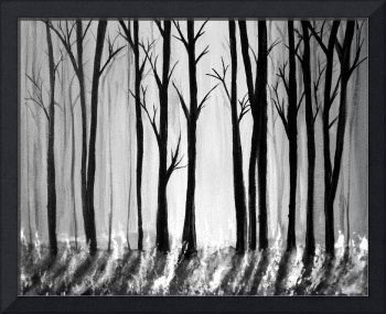 B + W trees - Kelly