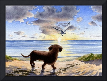 Dachshund Sunset 2
