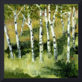 Birches Near a Lake Michigan Dune