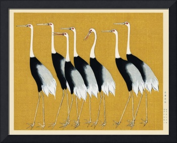 Flock of Japanese Red Crown Crane by Ogata Korin