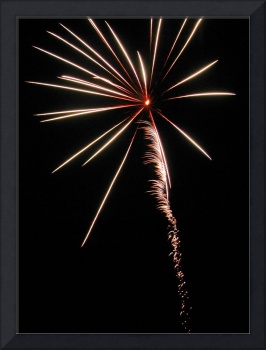 White Palm Tree     Fireworks