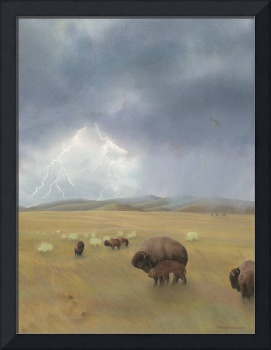 Home for Bison