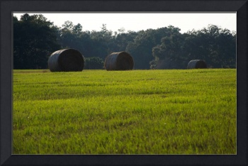 The Mighty Hay Bales