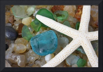 Starfish Star Fish Art Prints Sea Glass Seaglass