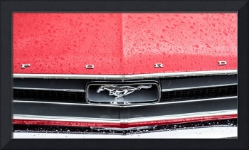 Ford Mustang Bonnet detail