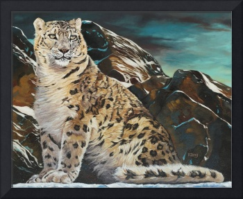 May-mountain spirit snow leopard 16X20