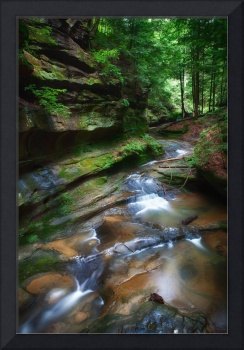 Early July in Hocking Hills by Jim Crotty-3