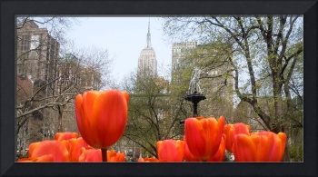 Red Tulips in Manhattan, New York City 4