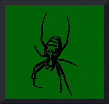 Spider - Black & Green 2