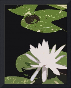 Cut of Frog and Lily by Bill McAllen