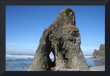 Ruby Beach Rock OC1009