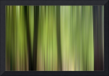 Abstract Trees in the Forest