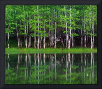 Lakeshore Panorama (Multi-Panel Center - 2 of 3)