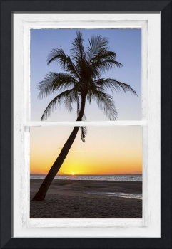 Coconut Palm Tree Tropical Sunset Window View