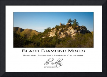 Black Diamond Mines