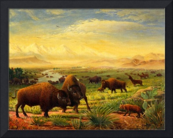 Buffalo Bison Great Plain Western Art Landscape