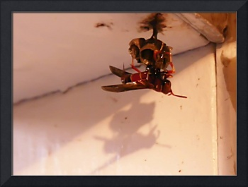 Evil Dead Wasp