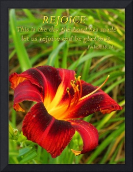 Rejoice With Lily And Scripture