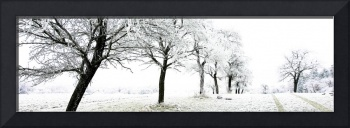 Winterscape 1
