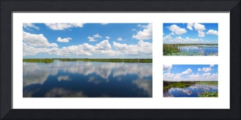 Skyscape Reflections Blue Cypress Marsh Collage 3
