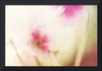 Dream Flower Abstract 1 of 2