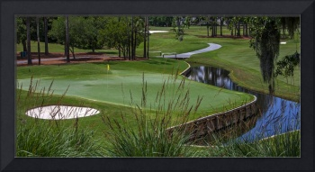 TPC Sawgrass Golf Course Hole 4 Photo 2 Wide