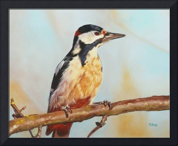 April-Woodpecker 16X20