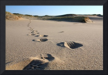 Cape Cod Footsteps in the Sand