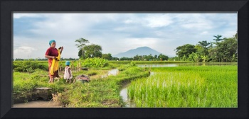 Mother & Daughter on a Rice Field